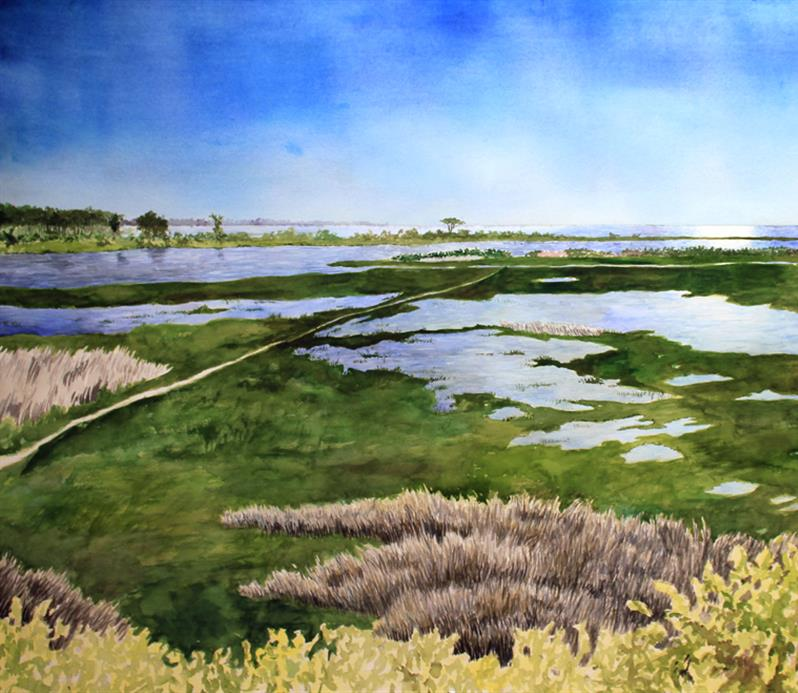 Life of the Marsh Trail