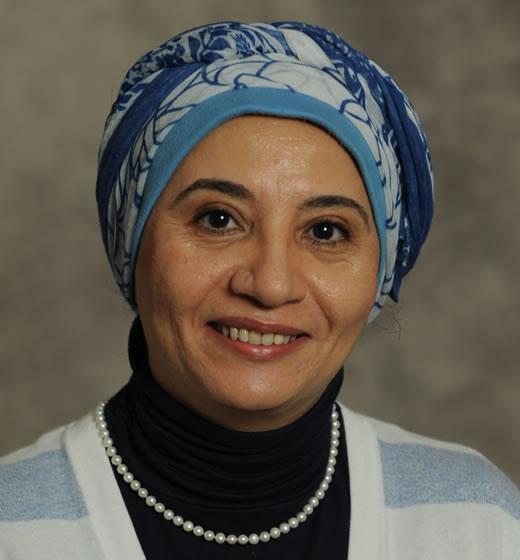 Amal K. Ali
